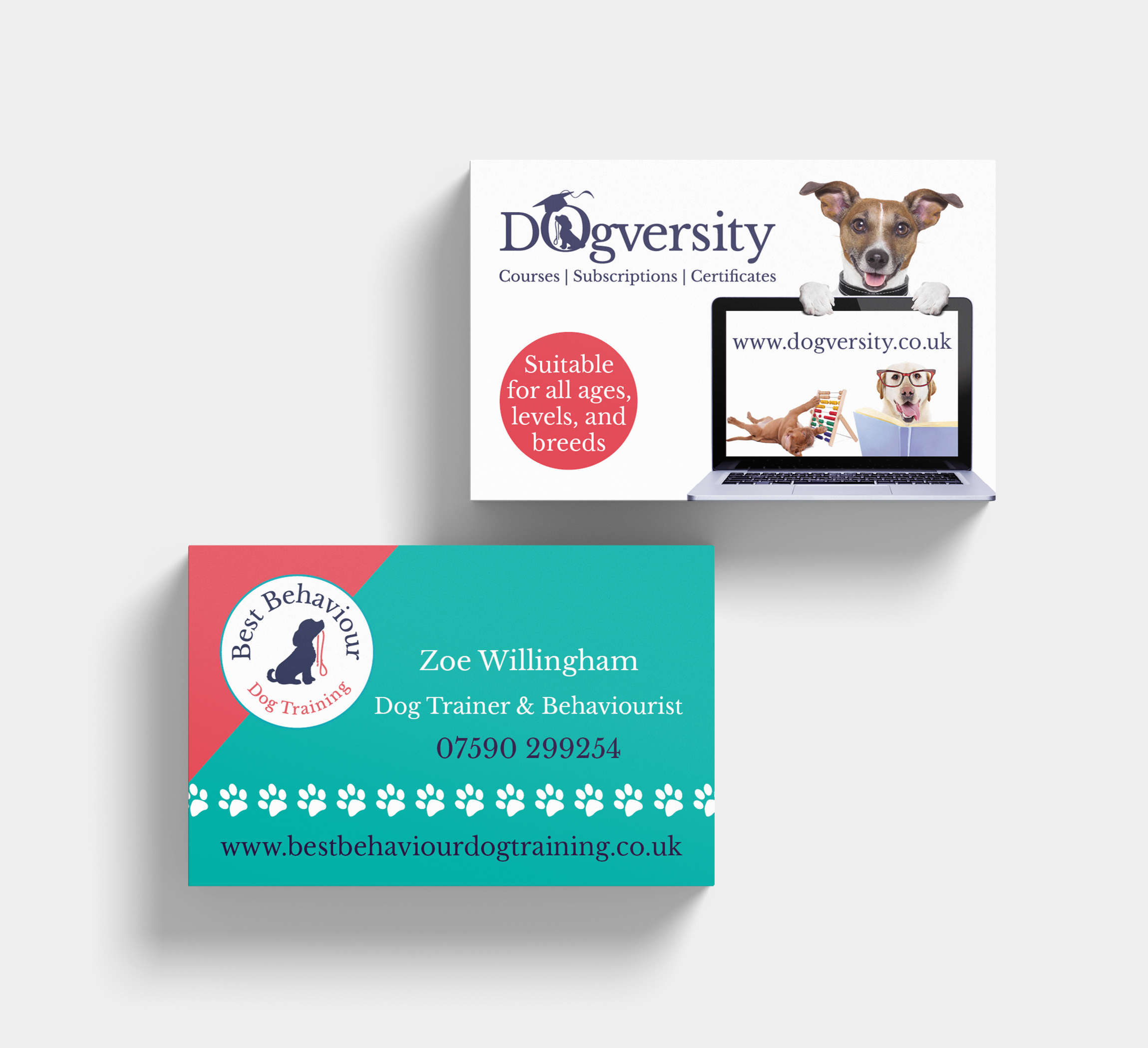 Creating new advertising for Best Behaviour and Dogversity